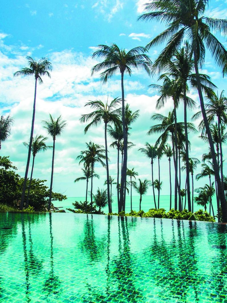 バンヤンツリーサムイの部屋から望む、美しい空と輝く海、そしてパームツリー。 スパやレストランも充実しながらもプライベート空間が確保された、価値がわかる大人のためのhidden resortと言えよう。
