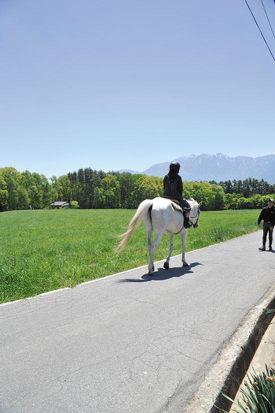 申し込めば乗馬体験も可能。